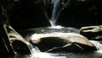 Photo of Tajne Jelašničke reke