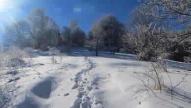 Photo of Planina Vardenik