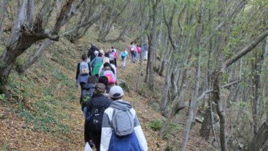 Photo of Tako se to radi! Učiteljica planinarka i njeni mali planinari (FOTO)