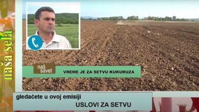 Photo of Naša sela: Kako prodati proizvedeno