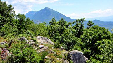 Photo of Vrh Suve planine odličan za rekreativce: Crni kamen ili Presklan kao rešenje za beg iz grada (FOTO)