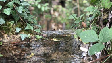 Photo of UPOZNAJTE SVRLJIG: Dar prirode! Ovde turizam može da cveta