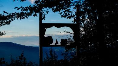 Photo of Značajne međunarodne organizacije: Ovo svaki lovac treba da zna