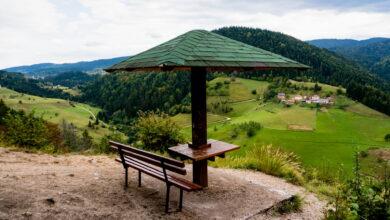 Photo of Za godinu dana kampovi su zabeležili više turista nego ranije