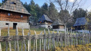 "Photo of Selo dobilo ime po vrsti kruške a njegove domaćice najpoznatije su pletilje na Balkanu – ""SIROGOJNO"" (VIDEO)"
