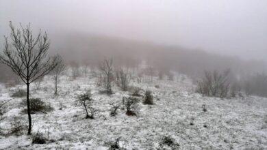 Photo of КUSAČA – Turustički biser u okolini Niša: Lokacija dobra za razvoj aktivnog odmora, privlačenje sportista i rekreativaca