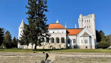 Photo of PRELEPI DVORAC DUNĐERSKI – jedan od najlepših u Srbiji! (FOTO)