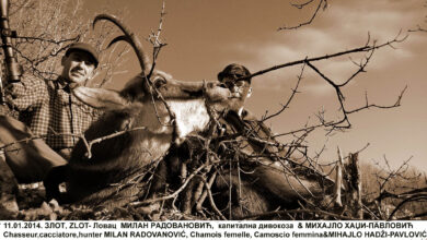 Photo of MIHAJLO HADŽI PAVLOVIĆ- Priroda bez divljači je kao ram bez slike